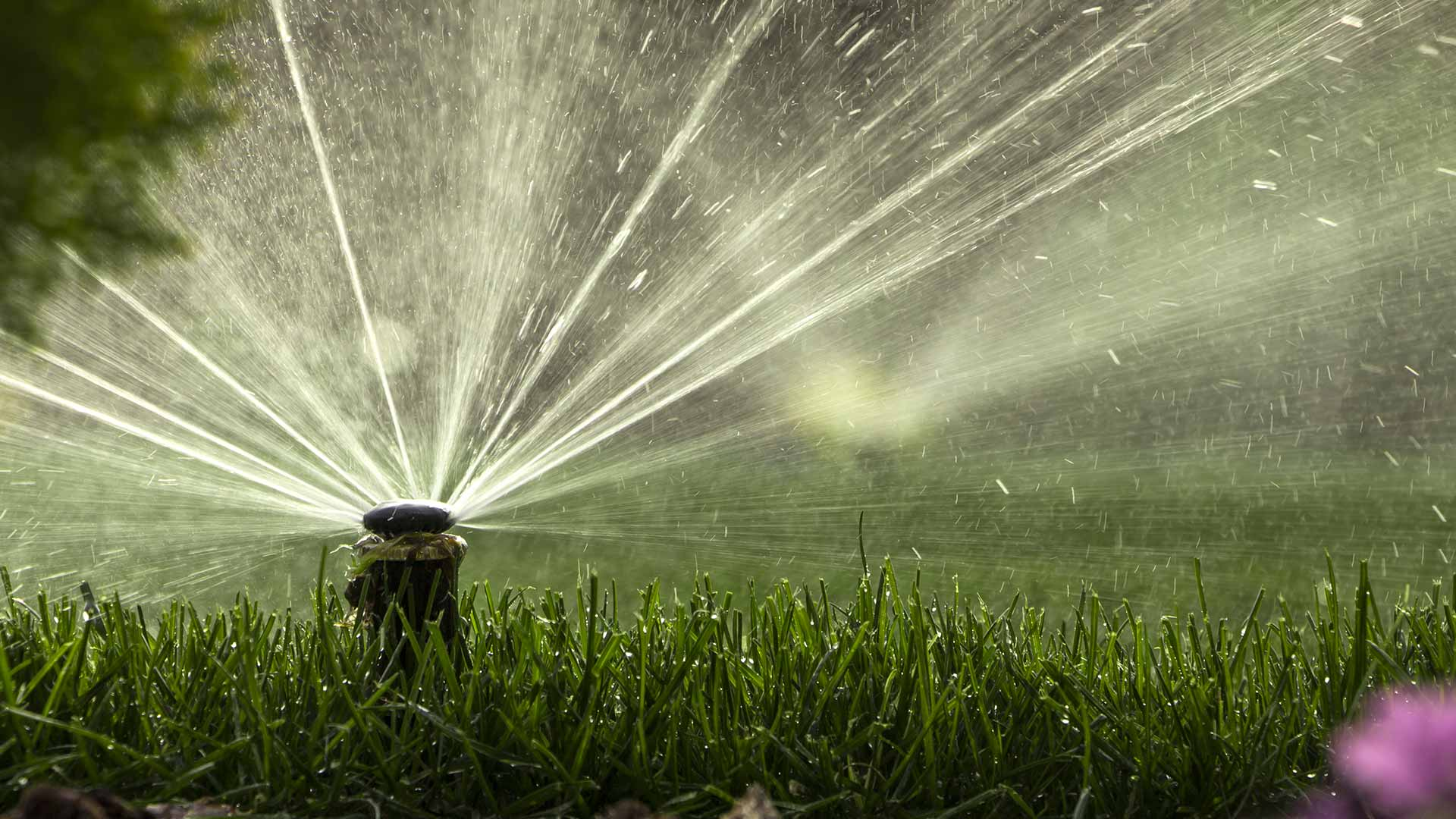 Irrigation maintenance services by a Prestige Outdoor Services pro in Calgary, Alberta.