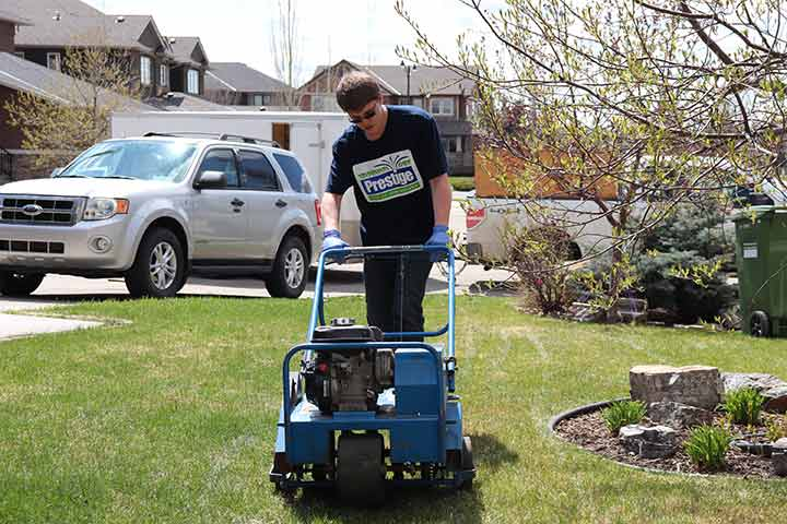 Aeration services at a home property in Calgary, Alberta.